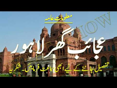 A visit to Lahore Museum | لاہور عجائب گھر - What & How