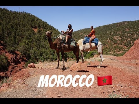 Around The Globe l Excursions in Morocco (Atlas mountains that almost KILLED us !)