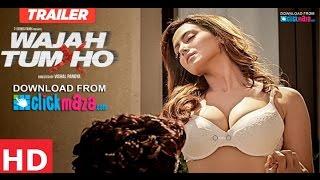 Wajah Tum Ho: Dil Ke Paas Song | Arijit Singh, Tulsi Kumar Full HD