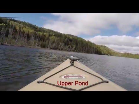 Camping in Deboullie Lake Region, Maine