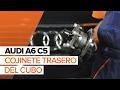 Cómo cambiar cojinete de rueda en AUDI A6 C5 INSTRUCCIÓN | AUTODOC