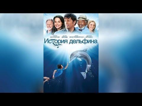 Смотреть история дельфина мультфильм