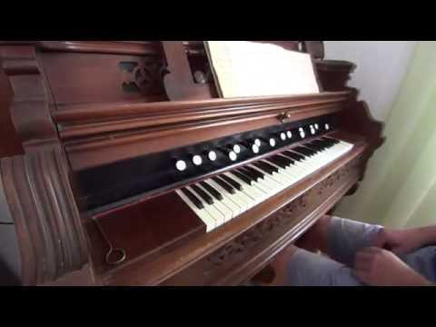 (European) Harmonium vs. (American) Reed Organ (M. G. Fischer - Risoluto)
