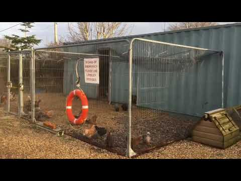 This is for Neeni in Australia who contacted me as heard we use shipping containers for our poultry