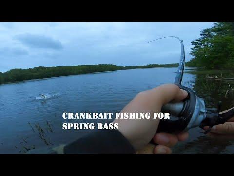 Crankbait Fishing For Spring Bass ▎BURKE LAKE