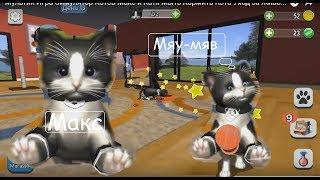 Мультик Игра Симулятор Котов Макс и Катя Мыть Кормить Кота Уход за Животными Gameplay Daily Kitten