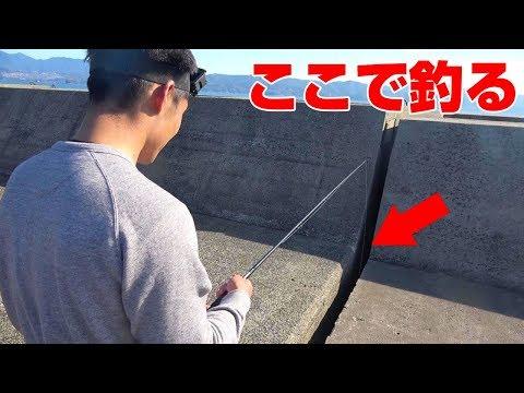 こんな所で釣れた魚とは…