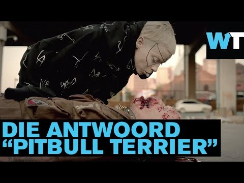 "Die Antwoord! South Africa's Zef Kings Unleash ""Pitbull Terrier""