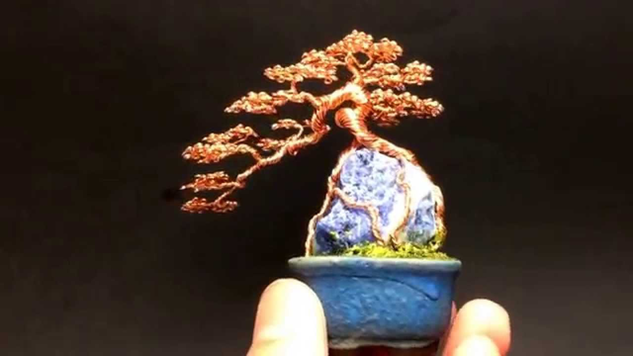 Bonsai Without Wiring