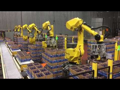 Automated Decasing System Uses Six FANUC Robots to Decase Bottles - StrongPoint Automation