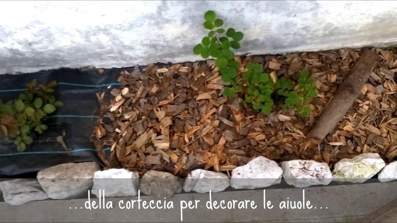 Fai da te in orto e giardino 10 idee facili a cui potevi for Bordi per aiuole fai da te