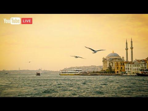 (CANLI 7/24) Enstrümantal Fon Müzikleri   Instrumental Turkish Music (Live) ♫ ᴴᴰ