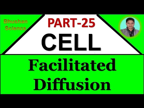 Facilitate  Diffusion | Passive transport | membrane transport in Hindi | Bhushan Science
