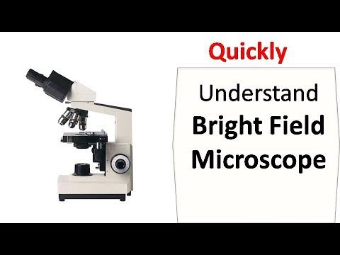 what is bright field microscopy