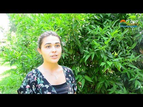 Жизнь в Турции - может ли иностранец открыть бизнес в Турции RestProperty