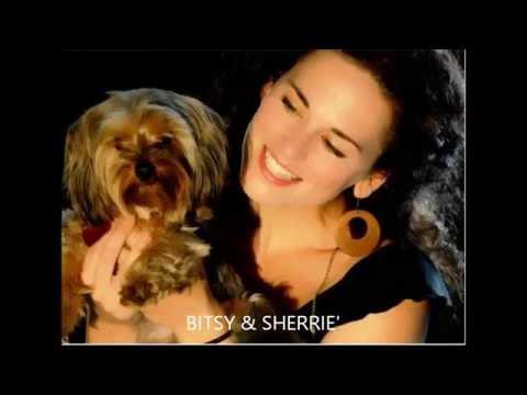 Sherrie Austin