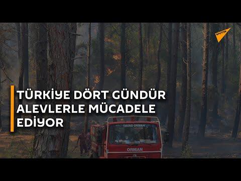 Yangınlar bitmedi: Türkiye dört gündür alevlerle mücadele ediyor