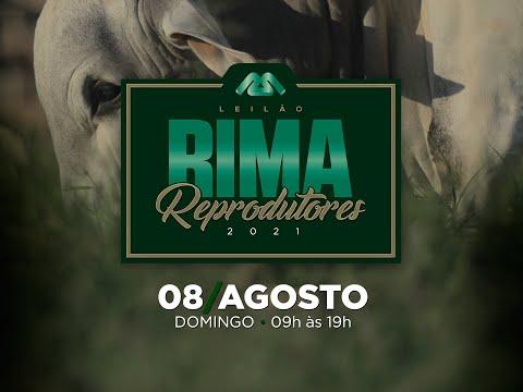 Lote 11   Rima Parâmetro   RIMA A5293 Copy