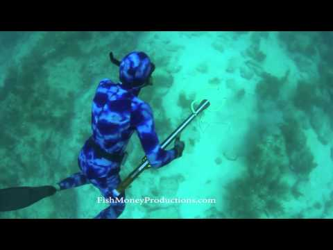 Sub Sea Spearguns trailer 06:2012