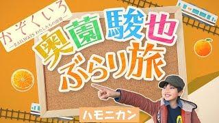 本動画、奥薗駿也ぶらり旅に関して 動画に出てくるハモニカンのロバ「ハ...