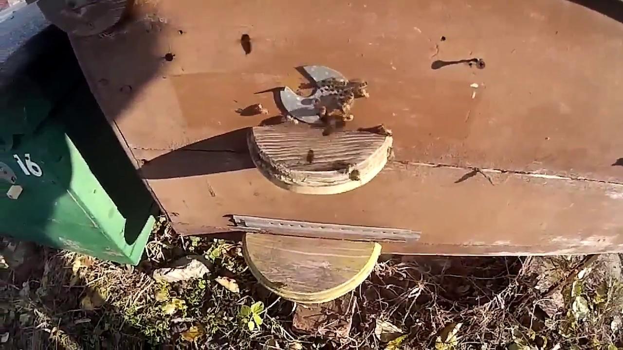 Тостер Magio MG-272Y - 3D-обзор от Elmir.ua - YouTube