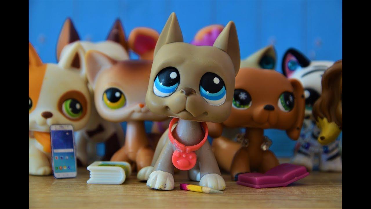 Littlest Pet Shop: U nás na gymplu!