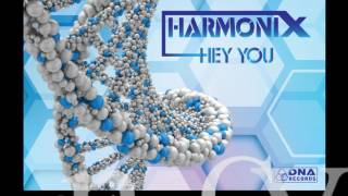 Harmonix - Hey You - preview