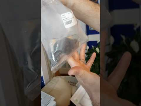 Unboxing Opening  Live Aquaria Order Dwarf Lion  Fish And Sea Cucumber