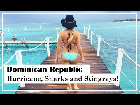 Punta Cana: Hurricane, Sharks And Stingrays - Reef Explorer