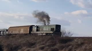Teretni voz Srbija Kargo prelazi most preko Tise u Titelu - Titel, 15. februar 2019.