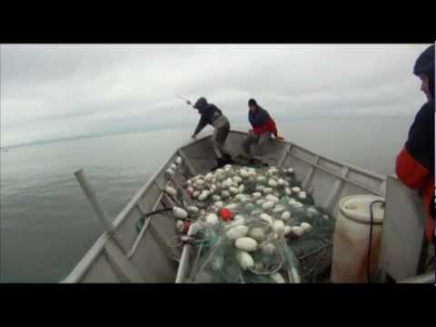 Crew Member Falling Overboard in Cook Inlet - Man Overboard