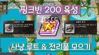 메이플스토리 핑크빈 200 육성 사냥루트 & 신전 전리품 팁 (Feat. 멘탈 바사삭, 핑크빈의 심각성)