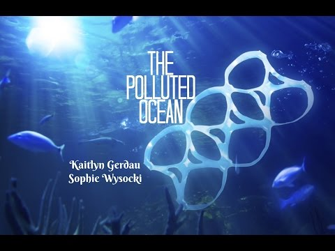 The Polluted Ocean