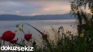 İclal Aydın - Bir Servi Diktim / Şu Karşıki Dağda (feat. Mümin Sarıkaya) (Lyric Video)