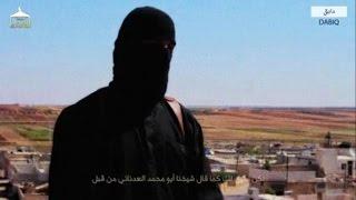 Боевики ИГИЛ казнили гуманитарного работника из США Питера Кэссига (новости)