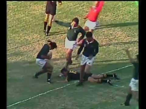 Springbok tries