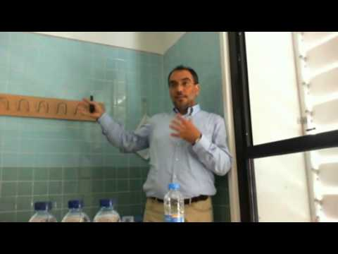 NIKOS PAPANDROULAKIS - LARVAL REARING & FISH FEEDING SYSTEMS
