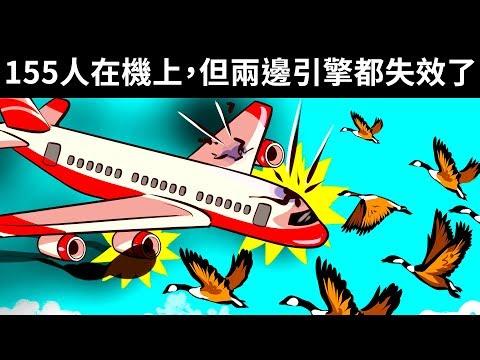 155名乘客在鳥擊中奇跡生還