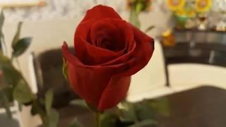 Очень красивое украшение для салата //День Матери!//Розы от сына//-30 в Сургуте