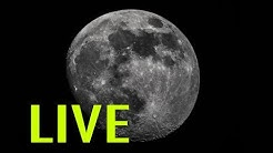 LIVE Moon Watching - Backyard Astronomy from the UK - Dobsonian Telescope