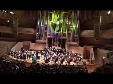 Концерт Lineage 2 Bill Brown Moscow 15.06.2019_7