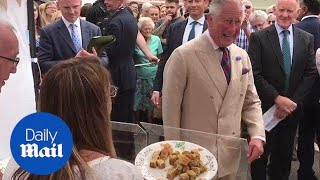 Prince Charles chuckles after being offered an insect cake - Daily Mail