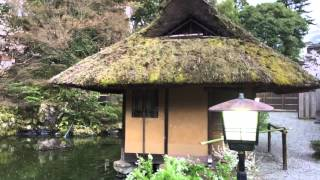 Kyoto Japanese Tea house
