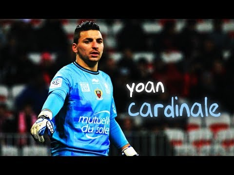 Yoan Cardinale ○ best saves 2017 ○ Ultimate   spectacular saves ... 296f84156eaa