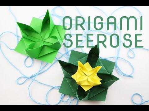 Origami Seerose Falten Origami Water Lily Faltanleitung Talu