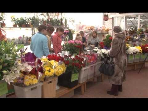 Какие цветы кому подарить?