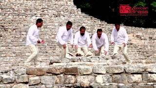 M5 MEXICAN BRASS - 2015 Trailer