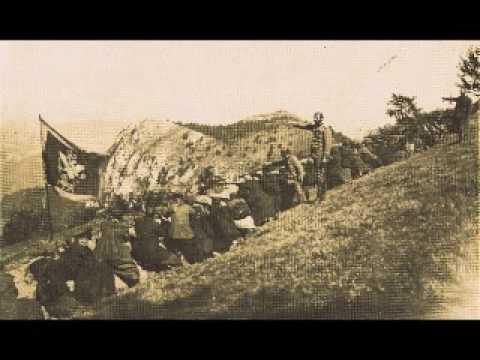 Crna Gora u 1. sv. ratu 1914. - 1918.
