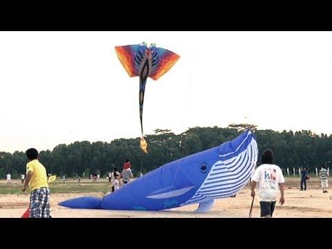 Kite Festival Singapore - NTUC Income Kite Festival Singapore 2013