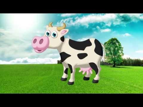 Развивающий мультфильм для детей животные для детей